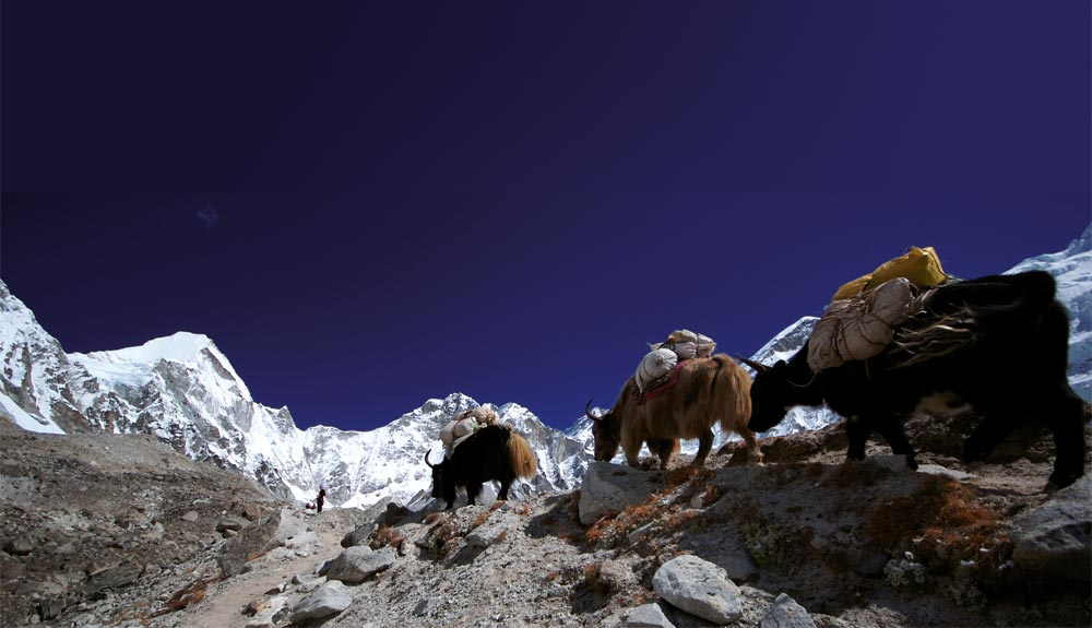 Prepara tu equipaje para el Himalaya