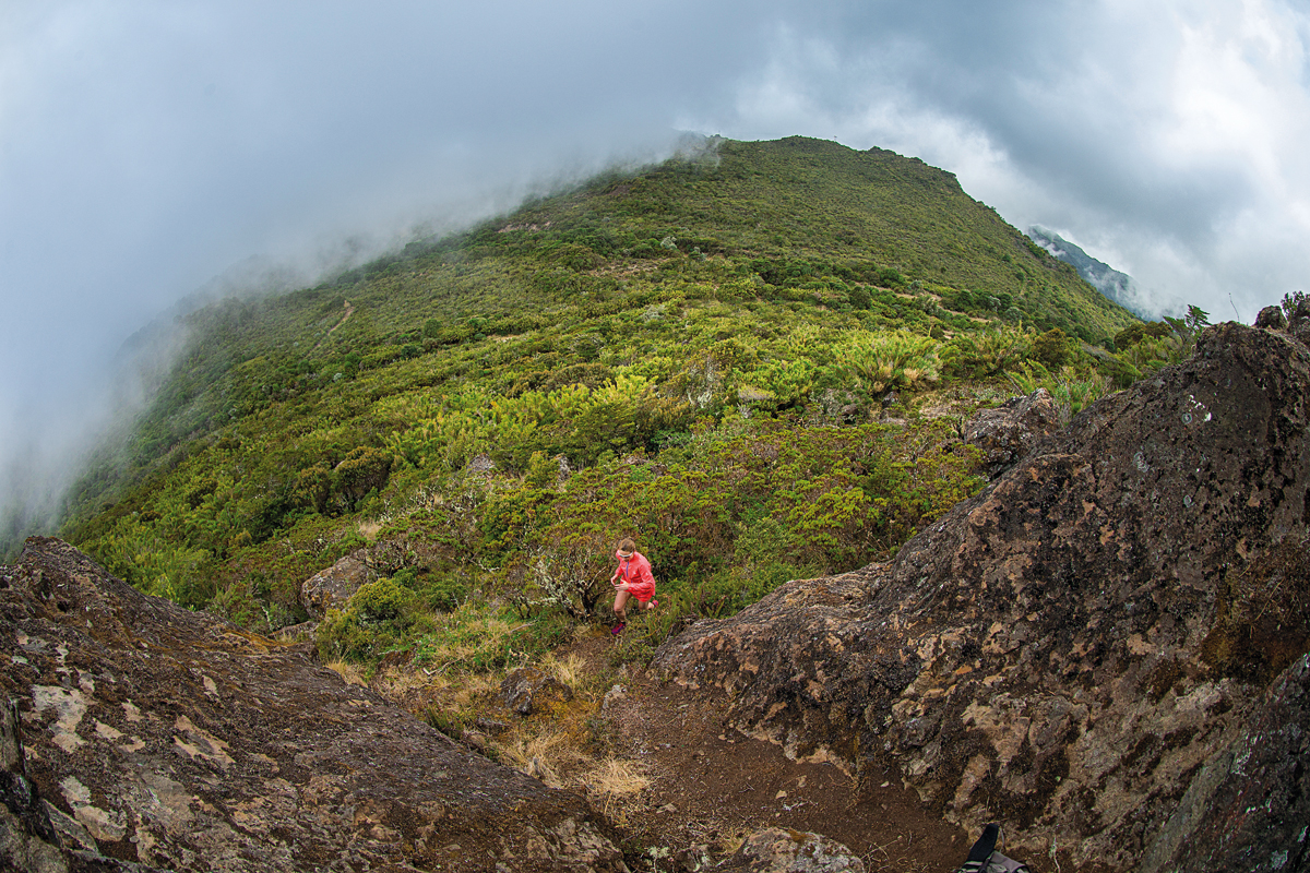 ¡Sorteamos un viaje a Costa Rica!