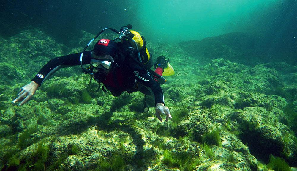 Alto Tajo: buceo en agua dulce
