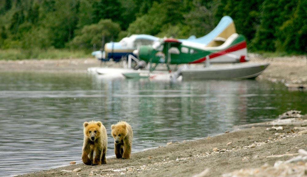 Alaska: riesgo y pasión en el aire
