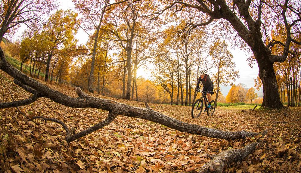 Gana un viaje a Costa Rica... pedaleando con Oxígeno