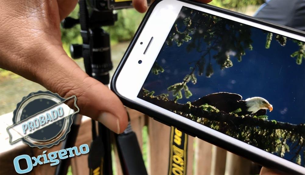 De la montaña a tu smartphone: Toshiba FlashAir
