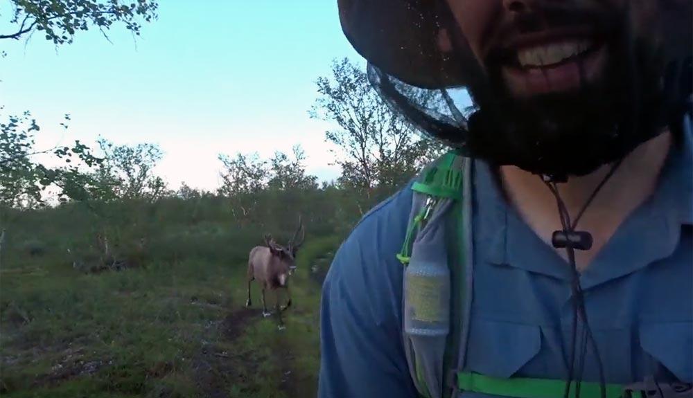 Pon un reno en tus trekkings...