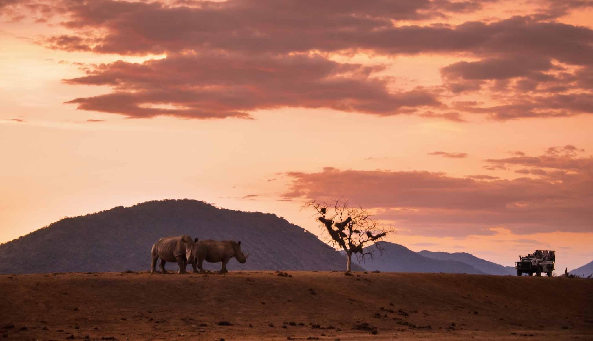 Viajes de eco-voluntariado en Sudáfrica