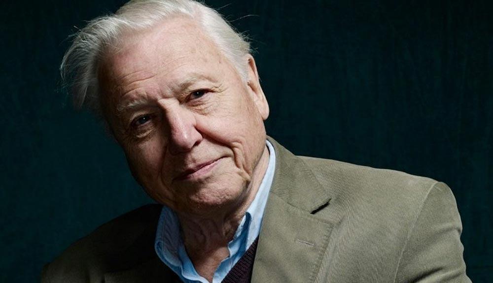 """Sir David Attenborough: """"El cambio climático es nuestra mayor amenaza en miles de años"""""""