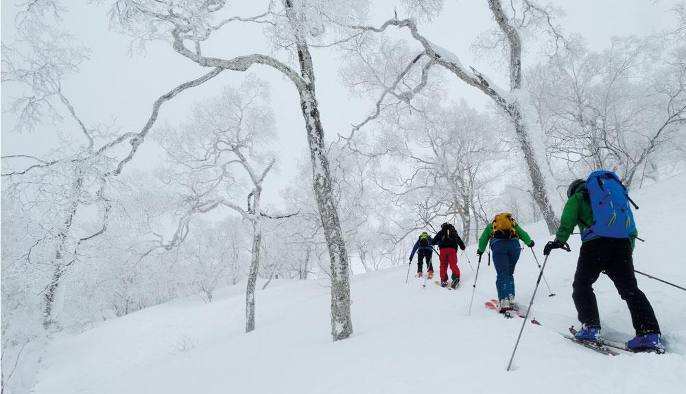 Japón: la mejor nieve del mundo
