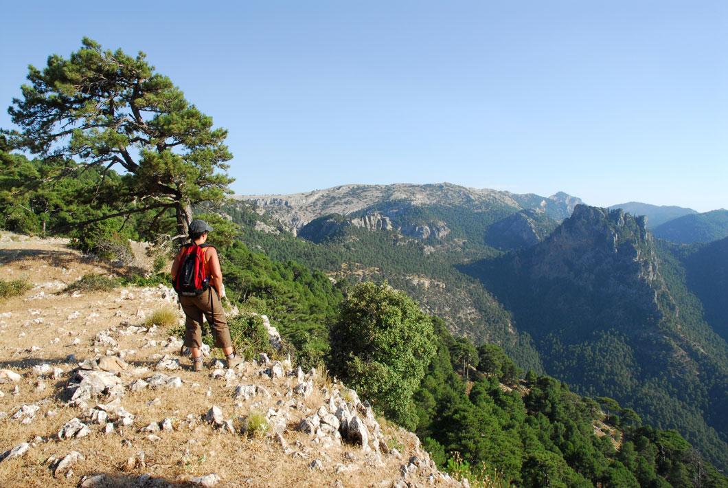 3 rutas por el Parque Natural de Cazorla, Segura y las Villas