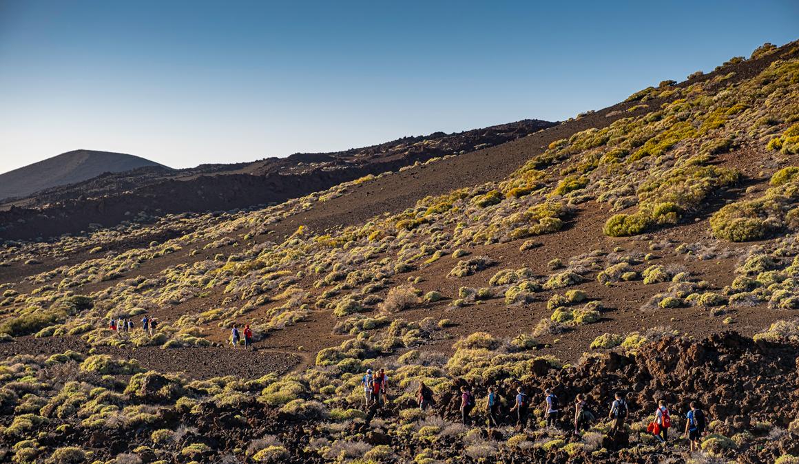 Tenerife Walking Festival en imágenes
