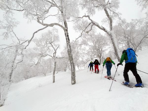Skimo Hokkaido