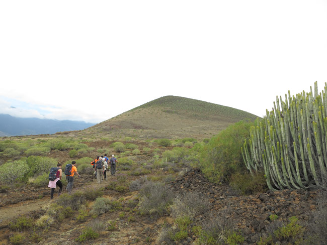 Tenerife Walking Festival costas