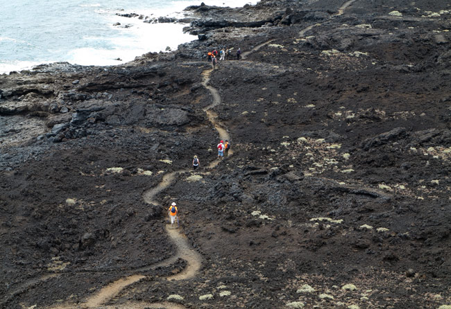 Tenerife Walking Festival ruta costa